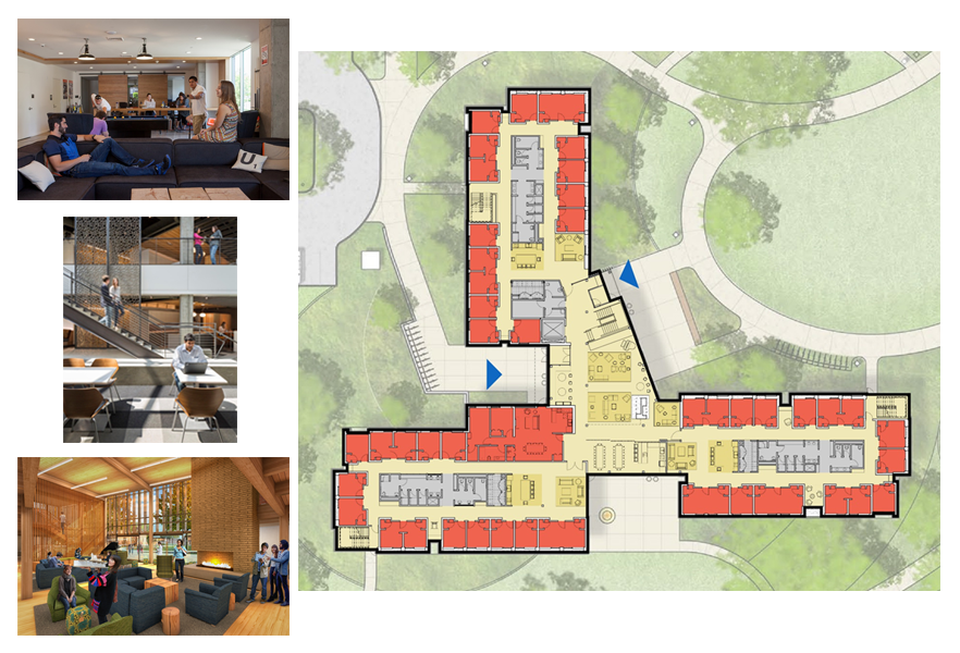 Living at Whitman Sophomore Residence Hall, mock up and layout