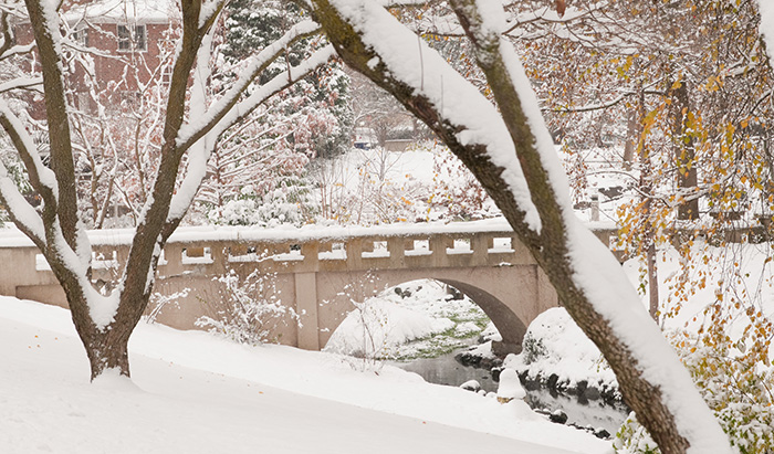 Whitman Campus blanketed in snow.