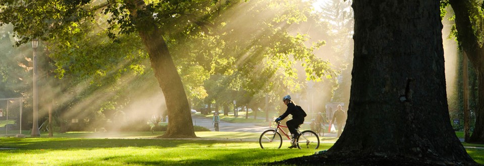 Biker in sunbeams on Whitman College Campus