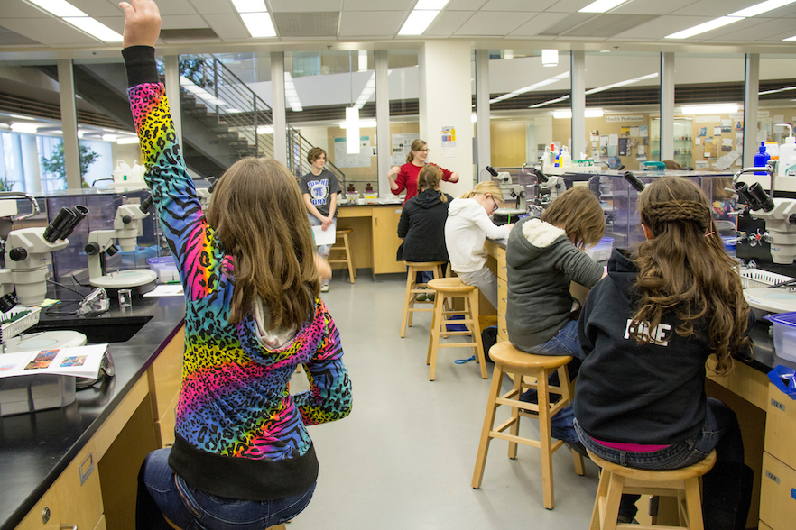 A girl raises her hand during a Great Explorations lab class held in the Whitman Hall of Science in 2015. PHOTO BY HALLEY McCORMICK '15