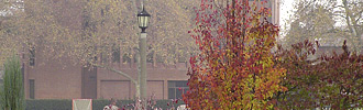 Whitman College Campus, fall morning