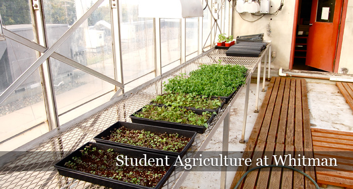 Student Agriculture at Whitman
