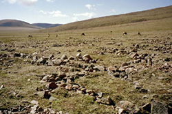 sorted-polygons