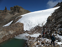 lewis glacier