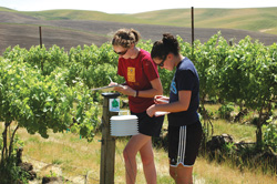 students at a vineyard