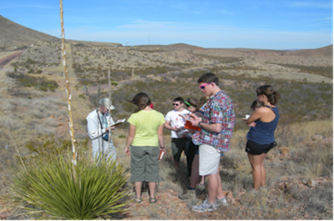 Just west of Van Horn, Texas, students examine the flora of the Chihuahuan Desert.  Photo by Matthew Morriss