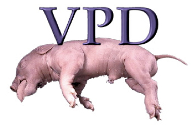 Virtual Pig Dissection header image