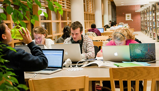 Image result for college student in library